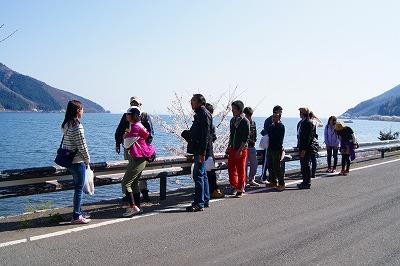 walking_sakura_3.jpg